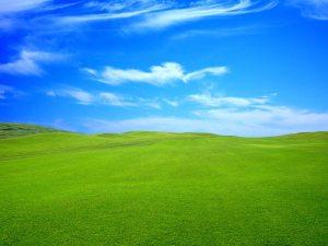 gree-lawn